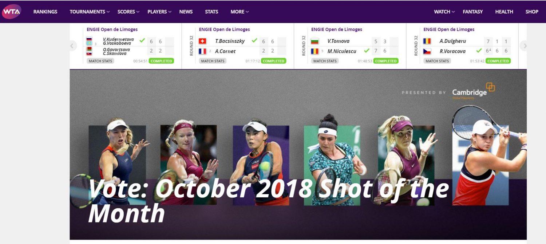 WTA Professionals website